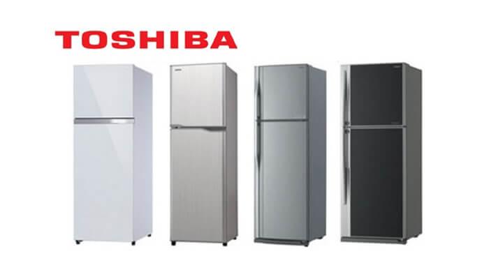 kekurangan kelebihan harga dan spesifikasi kulkas toshiba gr-y255e 2 pintu